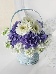 Baby Blue Basket