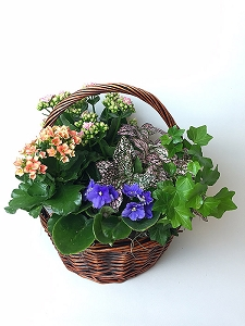 Basket of Blooms