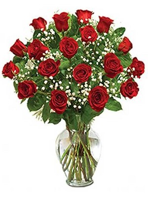 True Love in Red (18 Roses)
